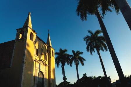 Santa Ana Church framed by palm trees during sunset light, and cloudless blue sky Merida, Yucatan, Mexico