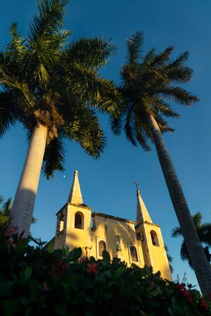 Santa Ana church framed by huge palm trees during sunset light, and cloudless blue sky Merida, Yucatan, Mexico