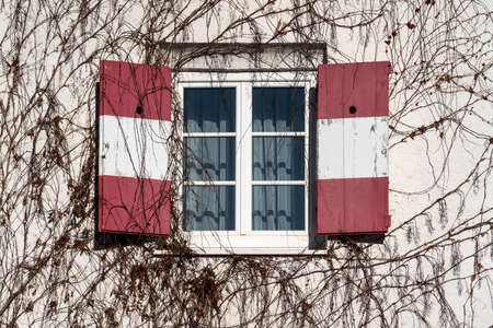 Open traditional window shutters of a guesthouse with red white Austrian flag at wall rambeled with leafless ivy