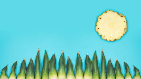 Happy minimalistic summer background with sun and gras on turquoise sky made by fresh pineapple