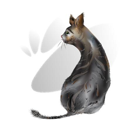 Tattered Cat. Small mammal. Vector illustration.