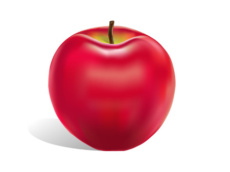 red apple: Illustration red apple on a white background. Illustration