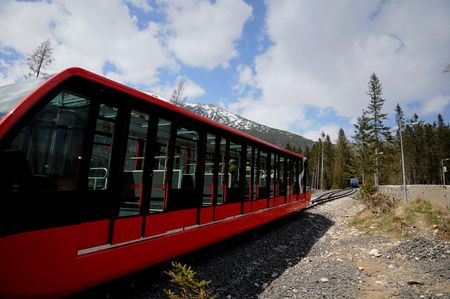 calamity: Railway funicular is an calamity forest