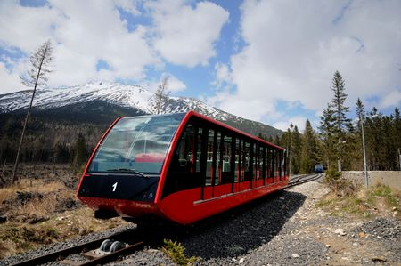 forest railway: Railway funicular is an calamity forest