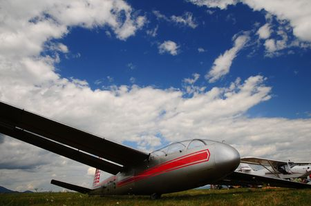 the emancipation: An unpowered glider sailplane in the grass