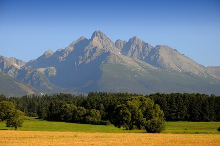 Corn field in september - under mountains Stock Photo - 3621211