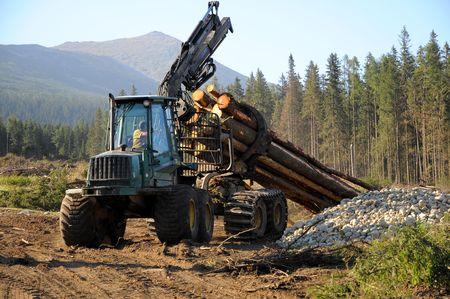 Skidder acarreo abeto árbol durante el invierno las operaciones forestales