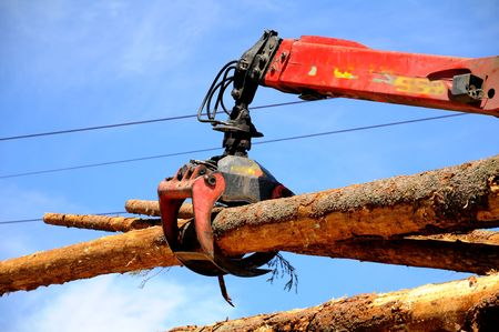manipulator: Wood fellers` contest: taking the logs with the hydraulic manipulator Stock Photo