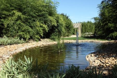 koy: details of a pond with fountain in a zen garden