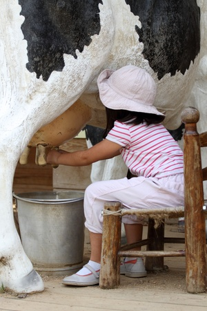 young cow: details of a young girl milking a cow