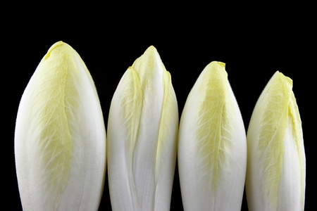 details of endives isolated on black