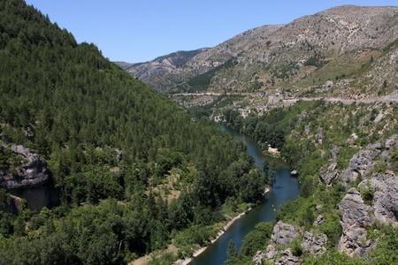 details of the gorges du tarn in lozère