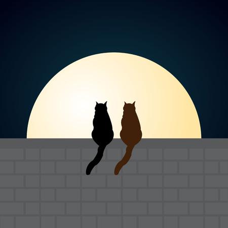 cats cartoon  Ilustração