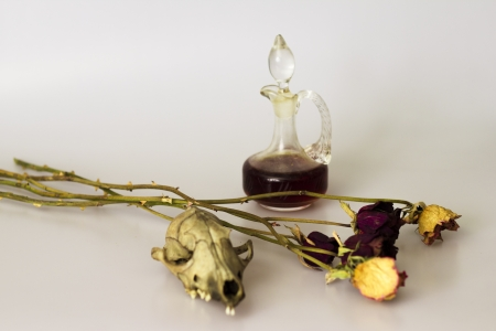 Small animal skull, dead flowers and a dark liquid photo