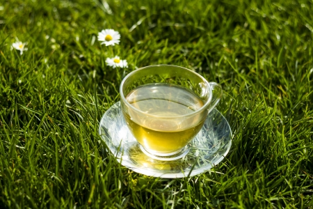 Cup of herbal tea on the lawn in a garden
