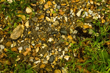 Dirt, stones and leaves background photo