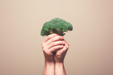 floret: Two hands are holding a floret of broccoli in a symbolic manner Stock Photo