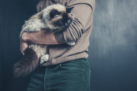 A young man is holding a big Birman cat