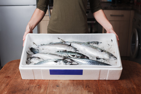 A young woman is holding a box of fresh mackerel in a kitchen photo
