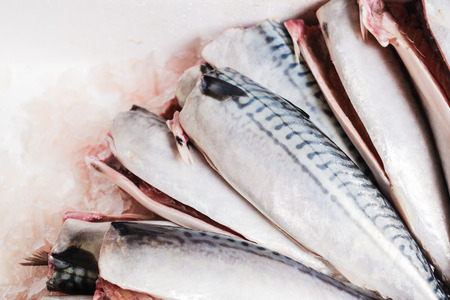 gutted: A bunch of cleaned and gutted mackerel arranged in a box with ice Stock Photo