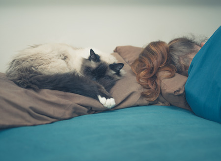 birman kitten: A young woman is sleeping in a bed with a cat next to her Stock Photo