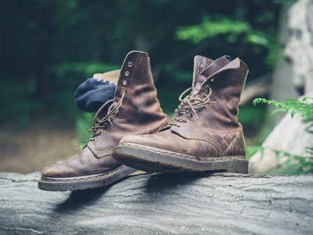walking boots: A pair of walking boots on a log in the forest