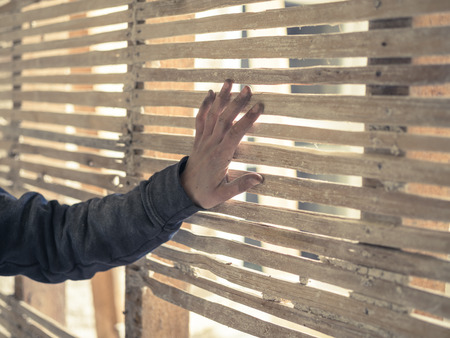 daub: A young persons hand is touching an old wattle and daub wall