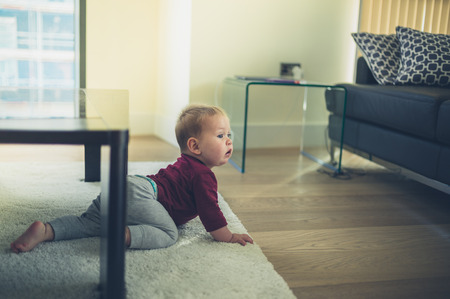 modern living room: A little baby is crawling around in the living room