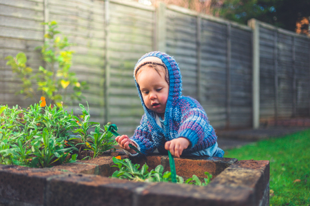 A cute little baby is doing some gardening outside in winter 스톡 콘텐츠
