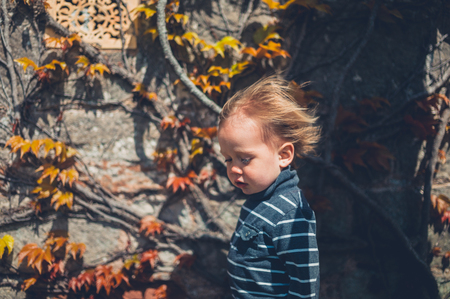 A little toddler boy in smart dress is getting his hair blown by the wind near a wall with a climbing plant