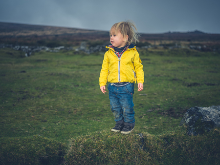 A little toddler is walking on the moor