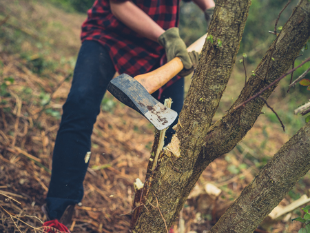 A young woman is cutting down a tree with an axe Standard-Bild - 122888985