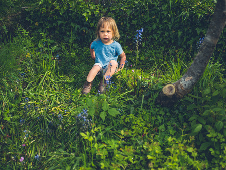 A little toddler is sitting in a garden with bluebells
