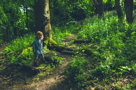 A little toddler is walking in the woods