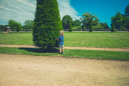 A little toddler is standing by a tree in the park in summer
