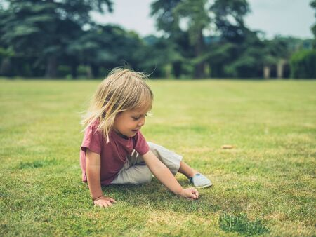 A little toddler is sitting on the grass in a park