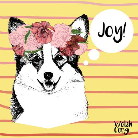 pembroke welsh corgi: Vector close up portrait of welsh corgi pembroke girl, wearing the flower wreath. Hand drawn domestic pet dog illustration. Isolated on yellow background with rose stripes.
