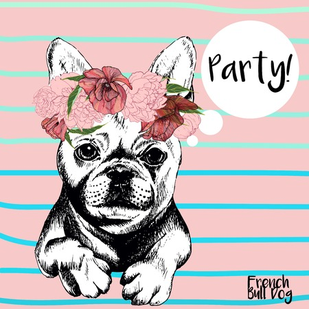 Vector close up portrait of french bulldog girl, wearing the flower wreath. Hand drawn domestic pet dog illustration. Isolated on rose background with cerulean stripes. Illustration