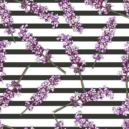 wallpapper: Vector seamless pattern of lavender blossom isolated on black strips. Hand drawn floral and geomrtric. Use for backgrounds, wrapping papper, wallpapper, print for greeting card, invitations, wedding.