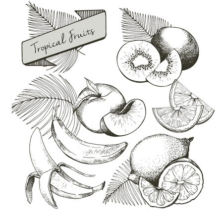helthcare: Vector set of tropical fruits. Banana, peach, lemon, kiwi and palm leaves in vintage engraved style. Hand drawn exotic organic tasty fruits isolated on white background. Illustration
