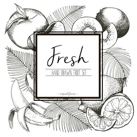 手のひらで新鮮なトロピカル フルーツのベクトル罫線イラストを残します。手描き正方形の白いテキスト テンプレートでおいしい有機ベジタリアン