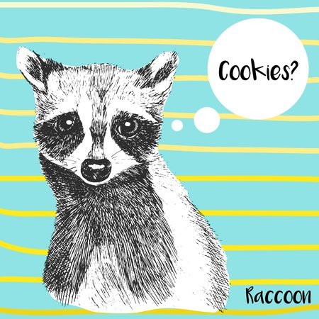 Vector close up portrait of raccoon. Hand drawn wild mammal animal  illustration. Isolated on ocean blue background with yellow strips.