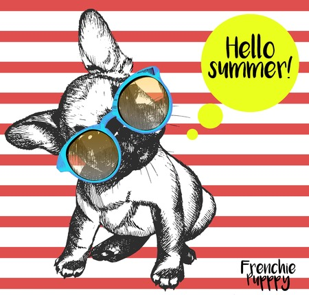 Vector close up portrait of french bulldog wearing the sunglassess. Bright hello summer french bulldog portrait. Hand drawn domestic pet dog illustration. Isolated on background with red stripes.