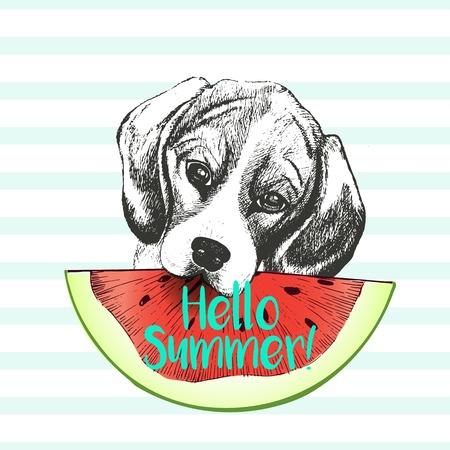 summer dog: Vector hand drawn illustration of beagle dog eating the watermelon slice. Hello summer. Isolated on light green strips. fresh fashion vibrant summer poster. Illustration
