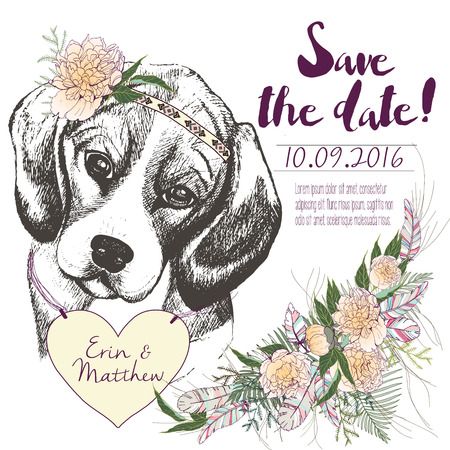coulomb: set of wedding invitation. Save the date card. Trendy style of 2016 summer boho chic.Beagle dog portrait wearing the flower headpiece and heart coulomb. Decorated with large flower boucket Illustration