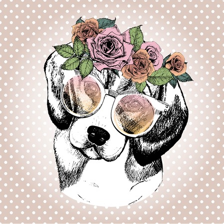 Vecotr portrait of dog, wearing the floral wreath and sunglasses. Hand drawn vintage trendy illustration. Beagle breed. Isolated on polka dot and rose gold background.