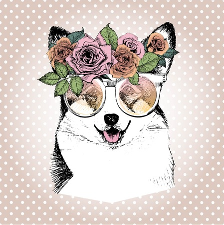Vecotr portrait of dog, wearing the floral wreath and sunglasses. Hand drawn vintage trendy illustration. Wesh corgi pembroke breed. Isolated on polka dot and rose gold background.