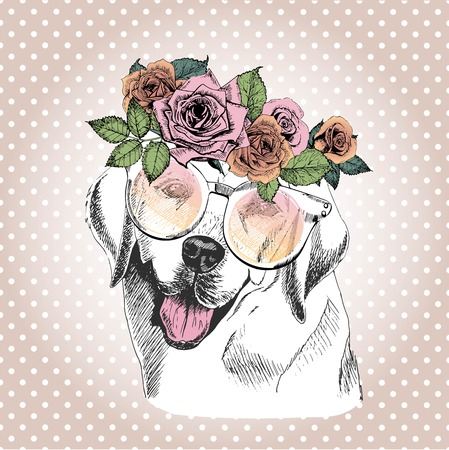 Vecotr portrait of dog, wearing the floral wreath and sunglasses. Hand drawn vintage trendy illustration. Labrador retriever breed. Isolated on polka dot and rose gold background.