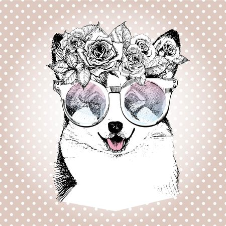 dog rose: Vecotr portrait of dog, wearing the floral wreath and sunglasses. Hand drawn vintage trendy illustration. Wesh corgi pembroke breed. Isolated on polka dot and rose gold background.