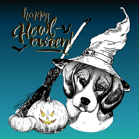 Vector greeting card for Halloween. Beagle dog wearing the witch hat. Broom and pumpkin lanterns. Decorated with lettering Happy Howl-oween and bats. Hand drawn. Illustration